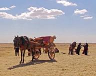 egypt;-giza;-horse;-carriage;-people;-giza-plateau