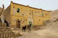 egypt;-village;-town;-home;-mud-home;-mud-brick;-donkey;-animals;-street;-dirt-street;-poor;-life