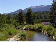 lake;-tahoe;-lake-tahoe;-spring;-basin;-tahoe-basin;-trees;-creek;-river