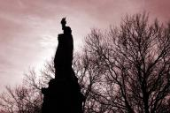 new-york,-statue-of-liberty;-liberty-island;-statue