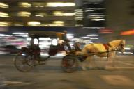 horse;-carriage;-horse-carriage