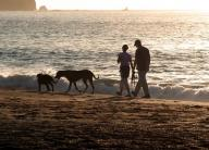 BakerBeach;-couple;-waves;-sunset;-silhoutte;-sand;-San-Fransisco;-Bay;-Pacific-Ocean;-ocean;-people;-couple;-couples;-leisure;