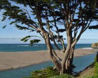 coast;-pacific-coast;-ocean;-shoreline;-pacific;-coastline;-california-coastline;-california-coast;-river;-gualala;-gualala-river